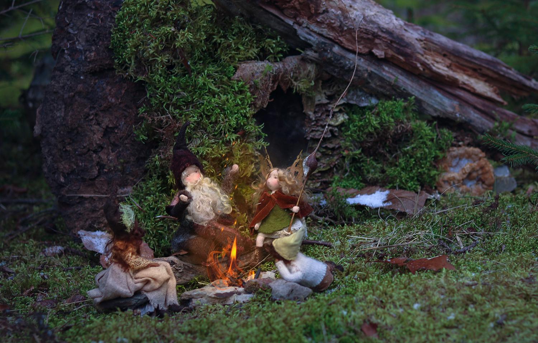 wild rose wood bonfire.jpg