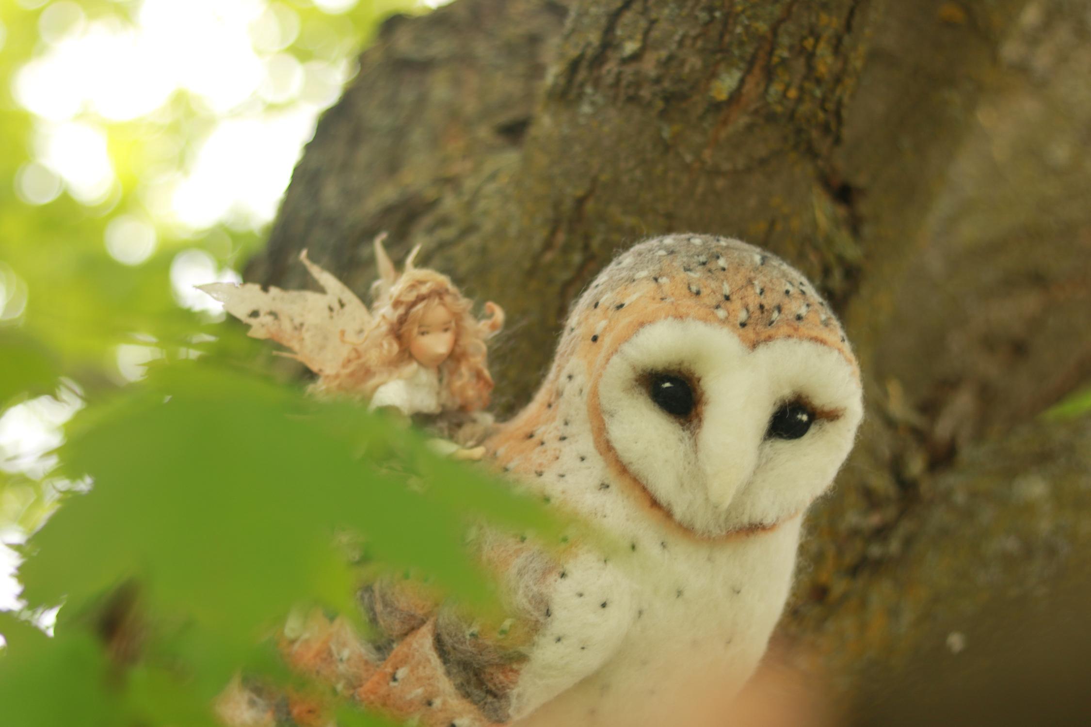 owl8.jpg