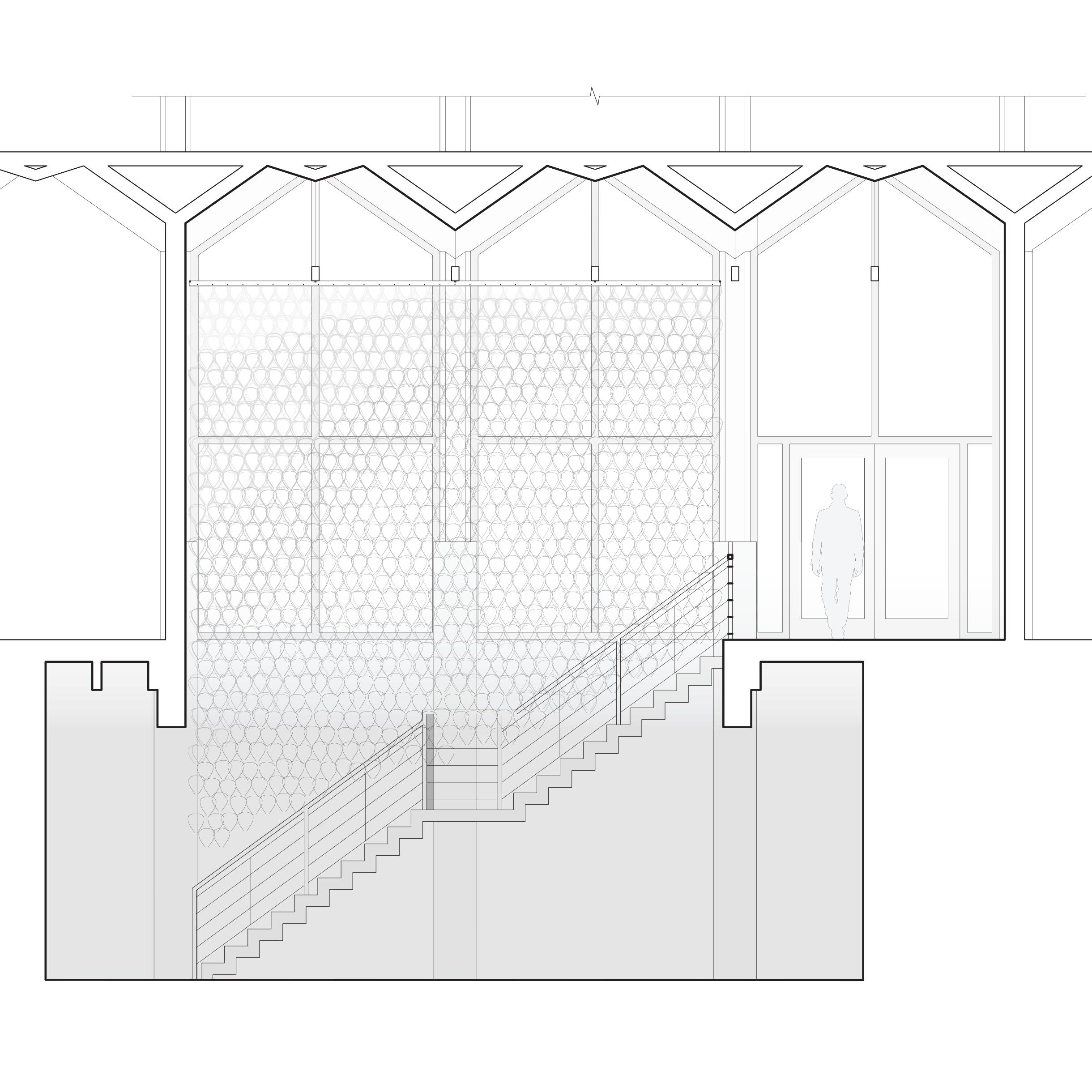 SP16_Studio_SuspendedInResin_Drawings_Longitudinal Section_1_1_Original.png