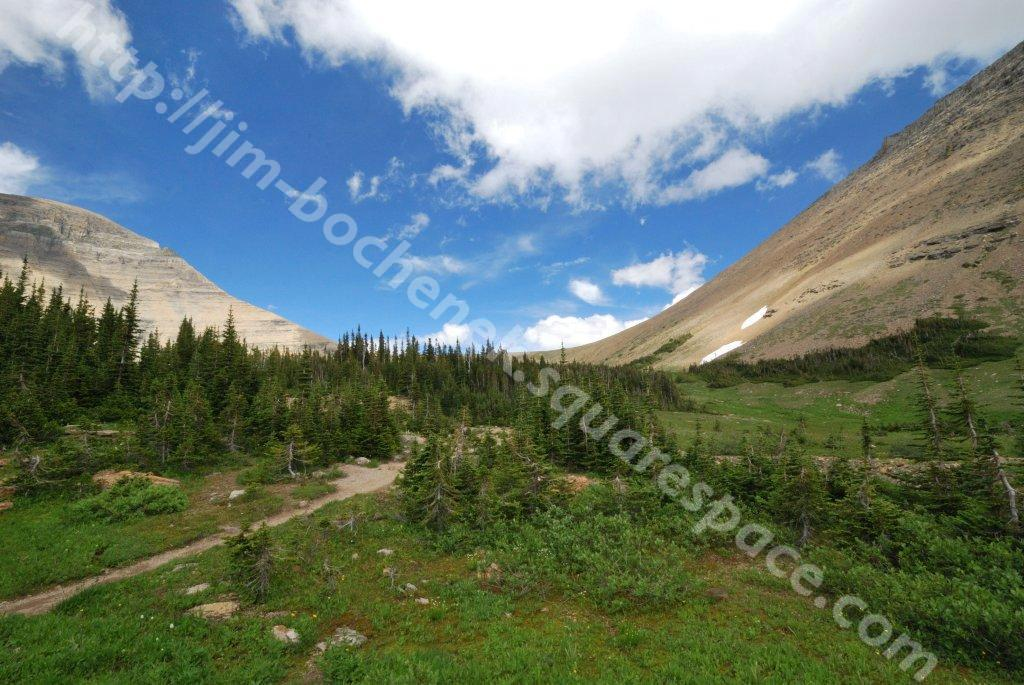 Piegan Pass Trail 8-10