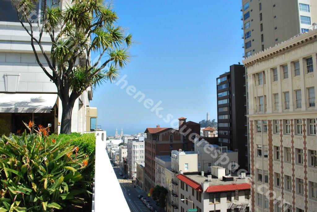 Coit Tower from Fairmont Roof Garden (day)2 SF 4-09.jpg