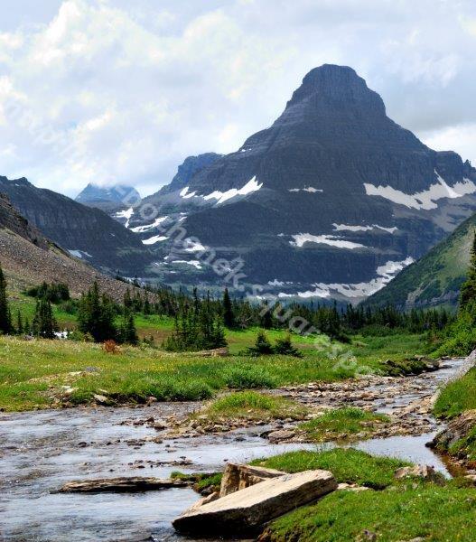 Mt. Reynolds 8-10 (2).jpg