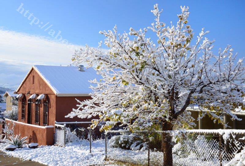 Superior Snow 1-1-15_262.jpg