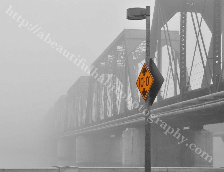 Fog 2-1-15_138.jpg