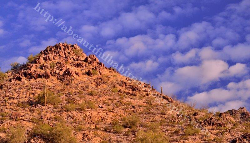 Sunrise at Squaw Peak 1-21-15_53.jpg