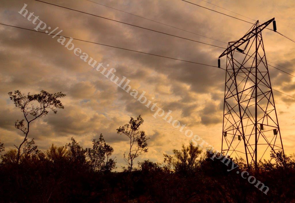 Picketpost Mountain 5-15-15_127.jpg