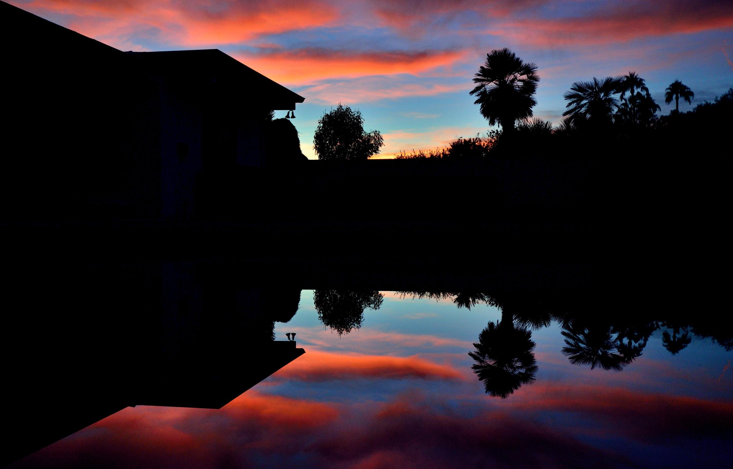 Sunset in Backyard12-10-15_38.jpg