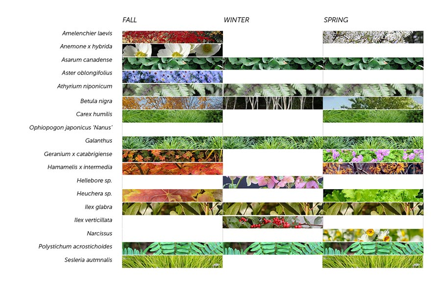 academic roof garden plant list new york