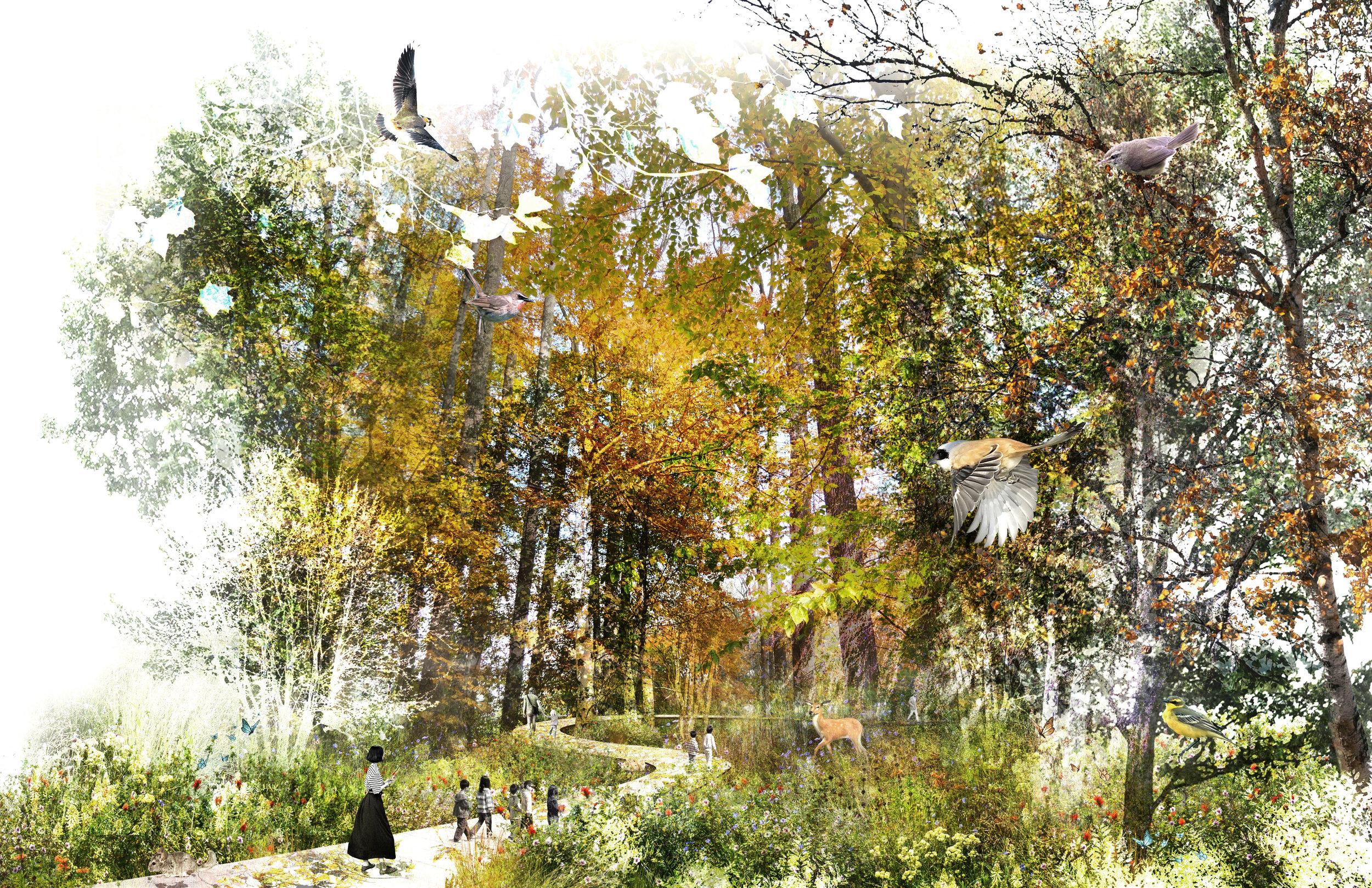 RIDGEWOOD RESERVOIR FOREST WALK BROOKLYN