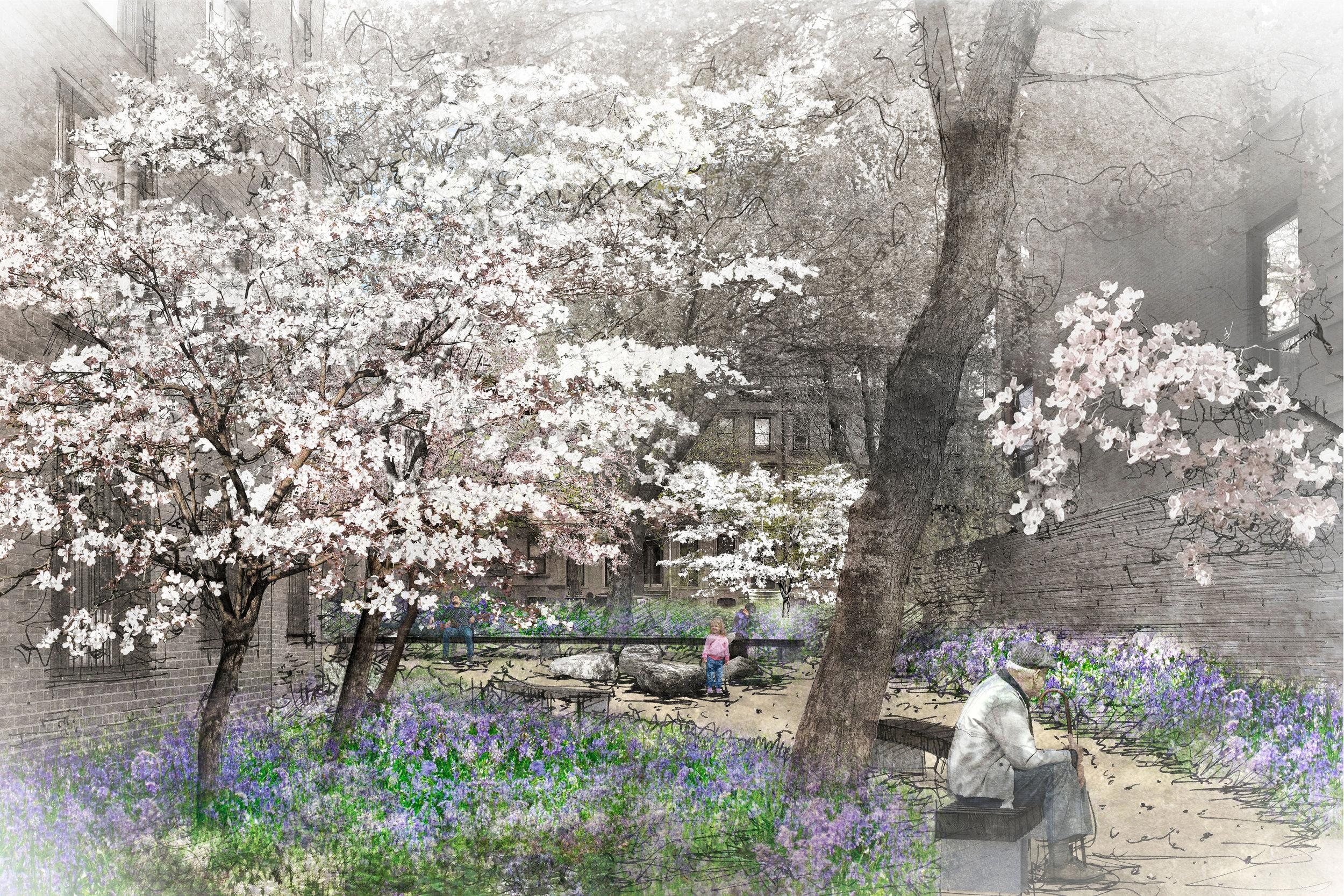 1613_rendering_woodland_walk.jpg
