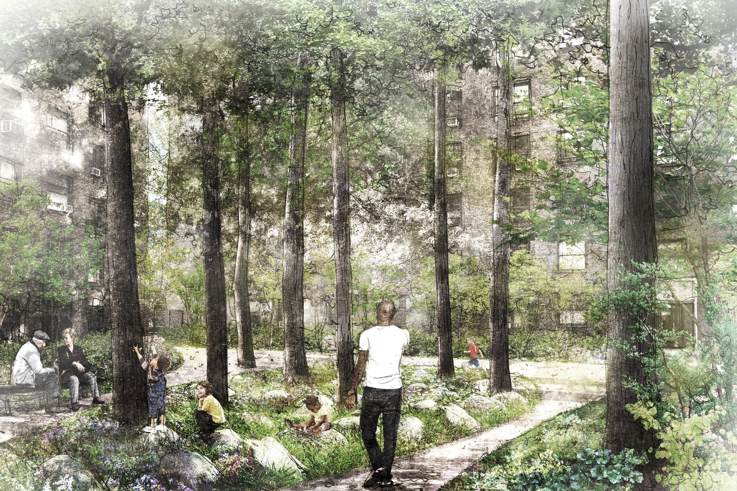 Hopping Garden.jpg