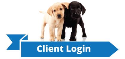 ClientLogin.png