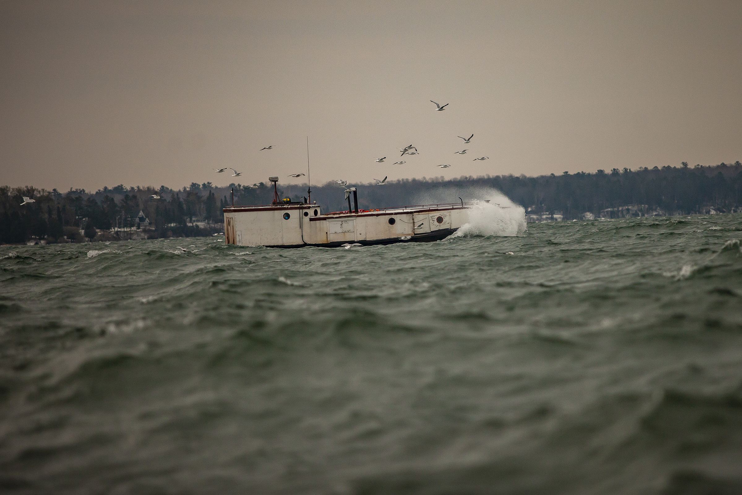 FishingBoat-Gulls-Waves.jpg