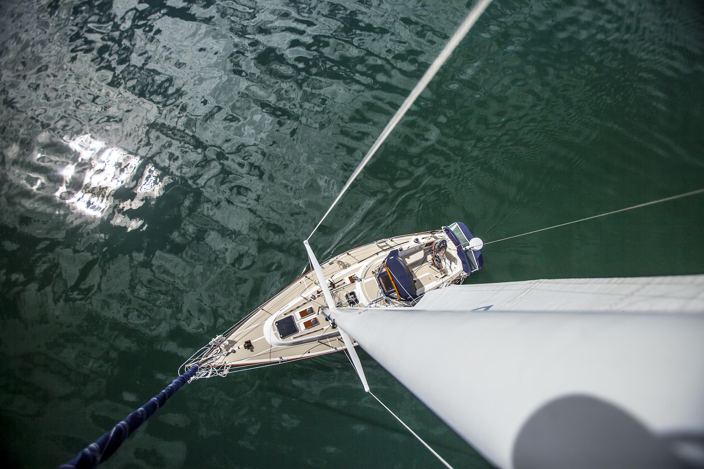 Sailing-Egret.jpg