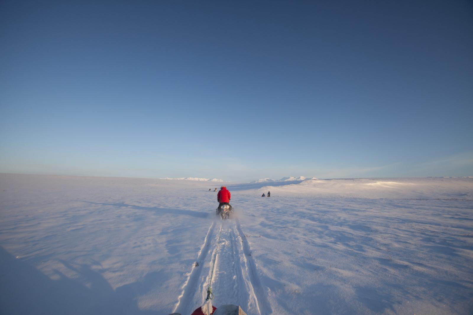 ArcticHeart2019-Blog014.jpg