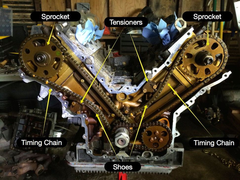 Locations of the timing chain, sprockets, tensioners and shoes.