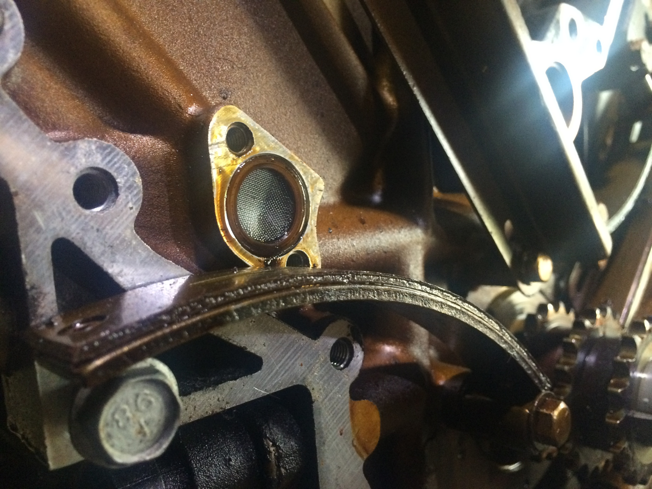 The filter screen behind the tensioner is easily removed with a fingernail and cleaned with a shop cloth.