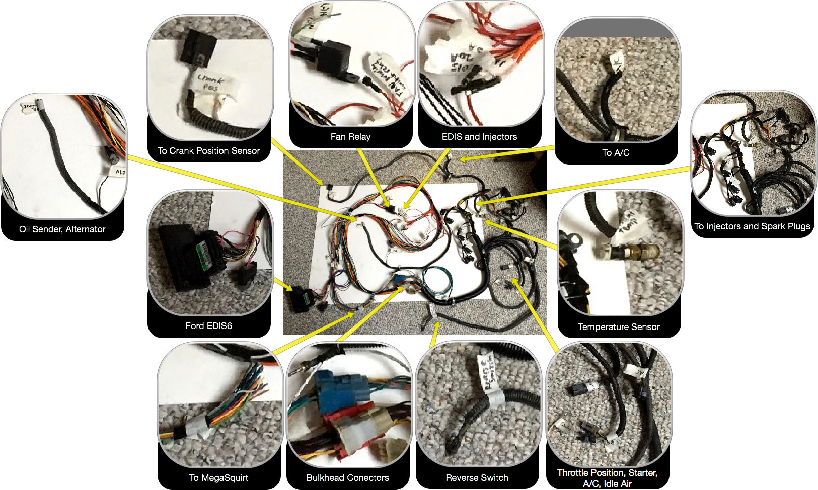 Josh's 3.0L EFI wiring harness with EDIS6 ignition control.