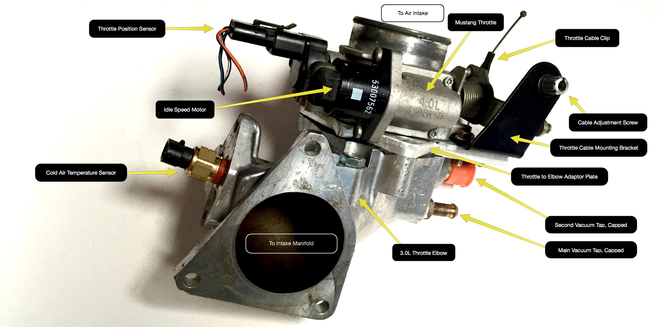 The throttle and installed components mounted on the elbow.