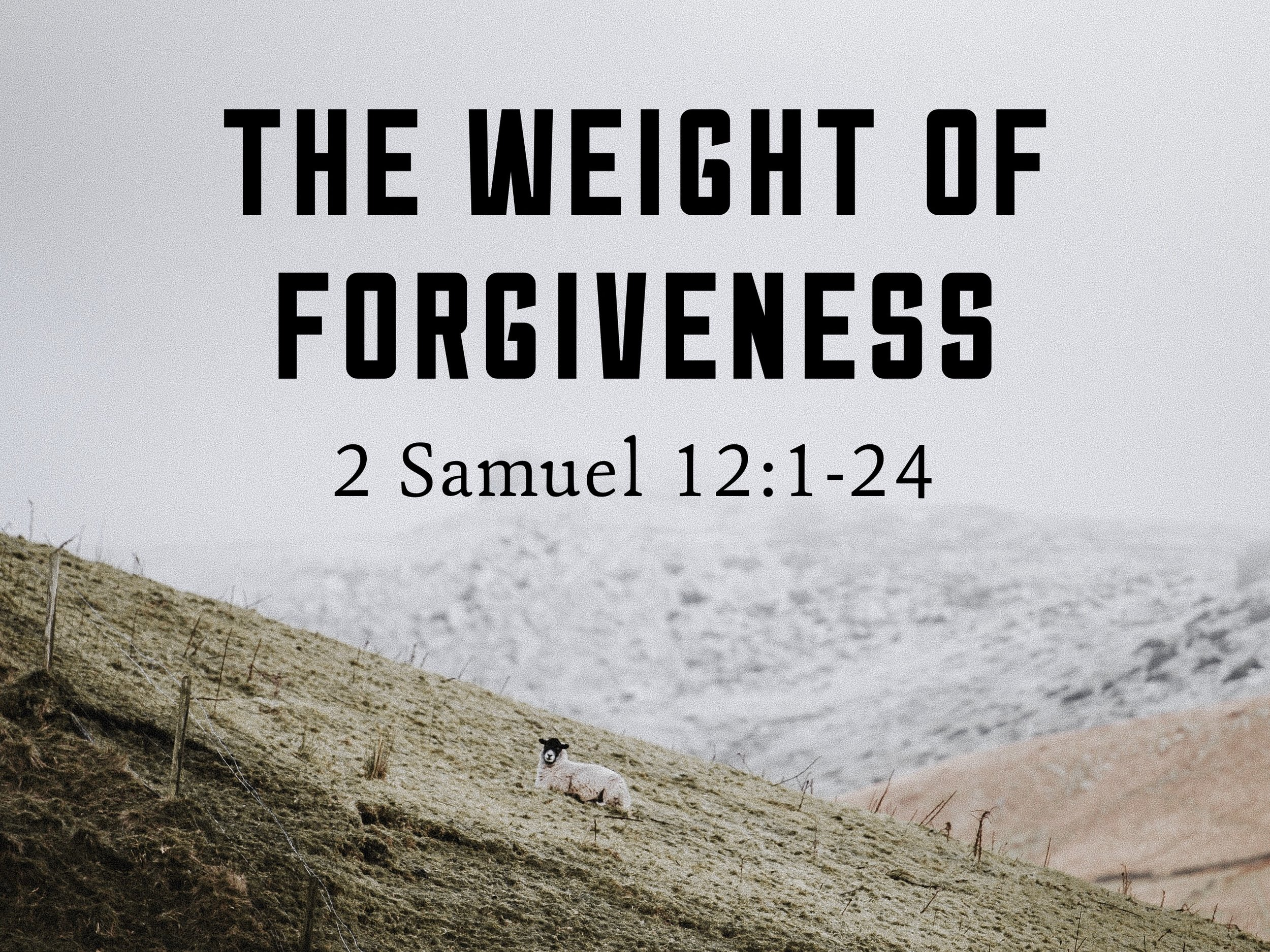 The Weight of Forgiveness.jpg