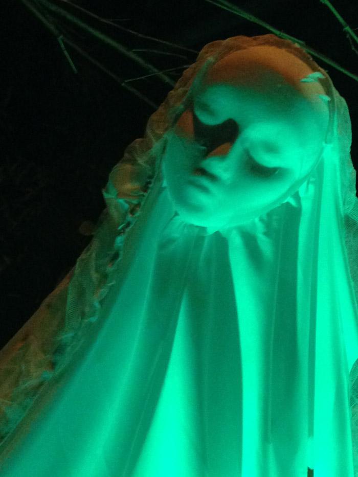 13.green-shadow-juvenilehalldesign.com-blog.jpg