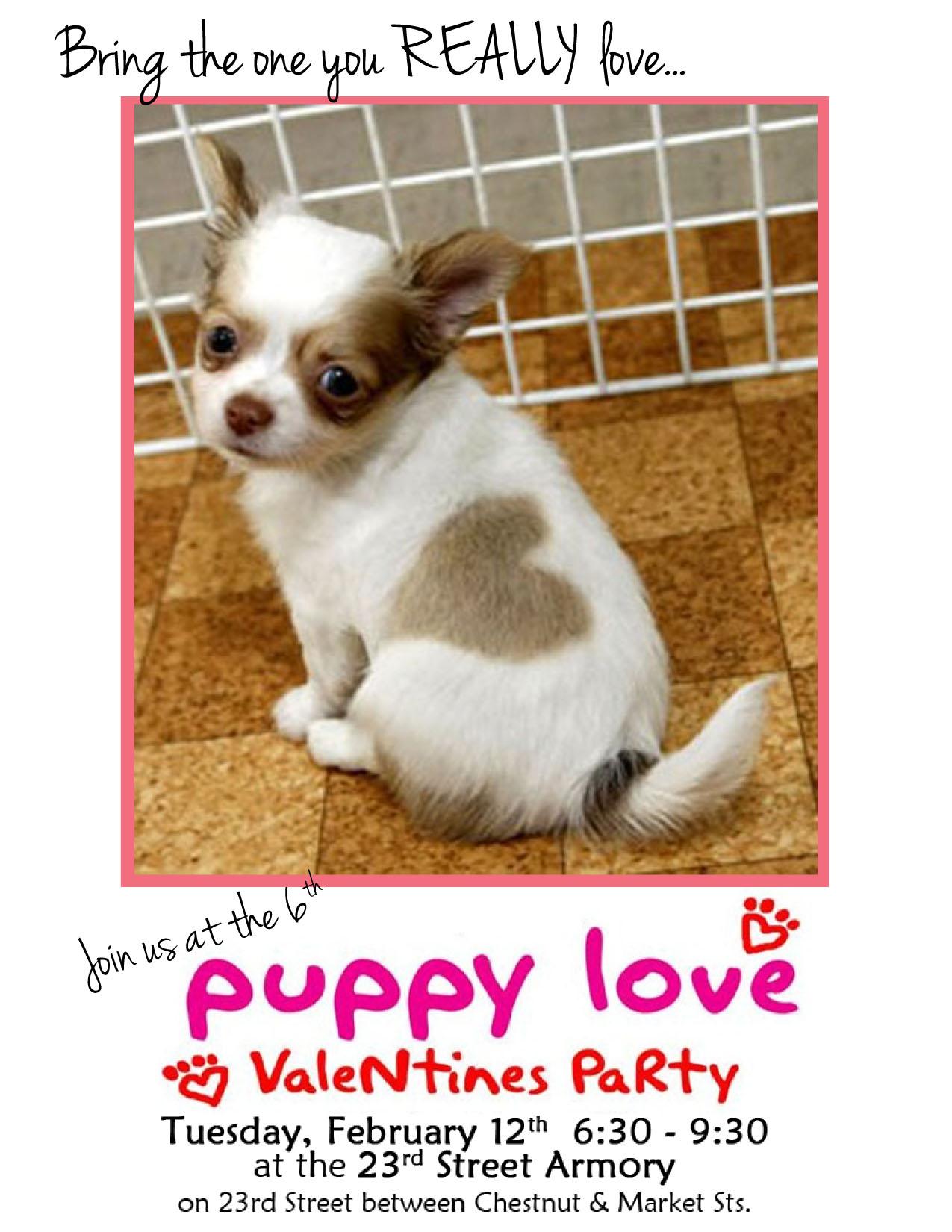 Puppy Love, Smokin' Betty's, Devil's Alley, PSPCA
