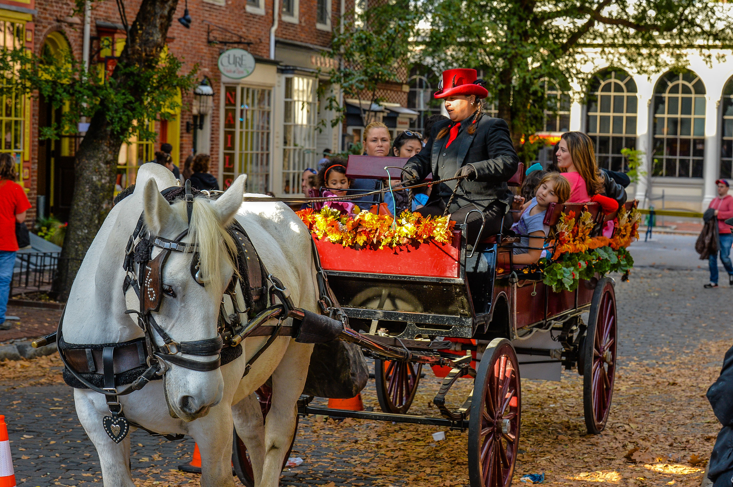 South Street Pumpkinfest, Carriage Rides