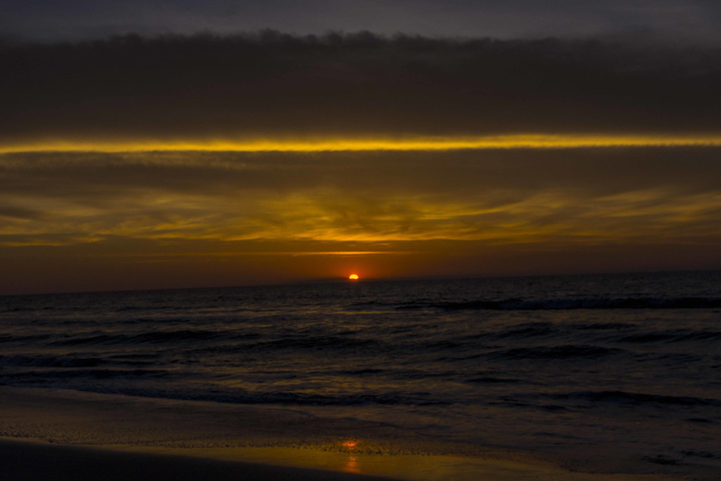 Sea of Light #1, 2011_1.jpg