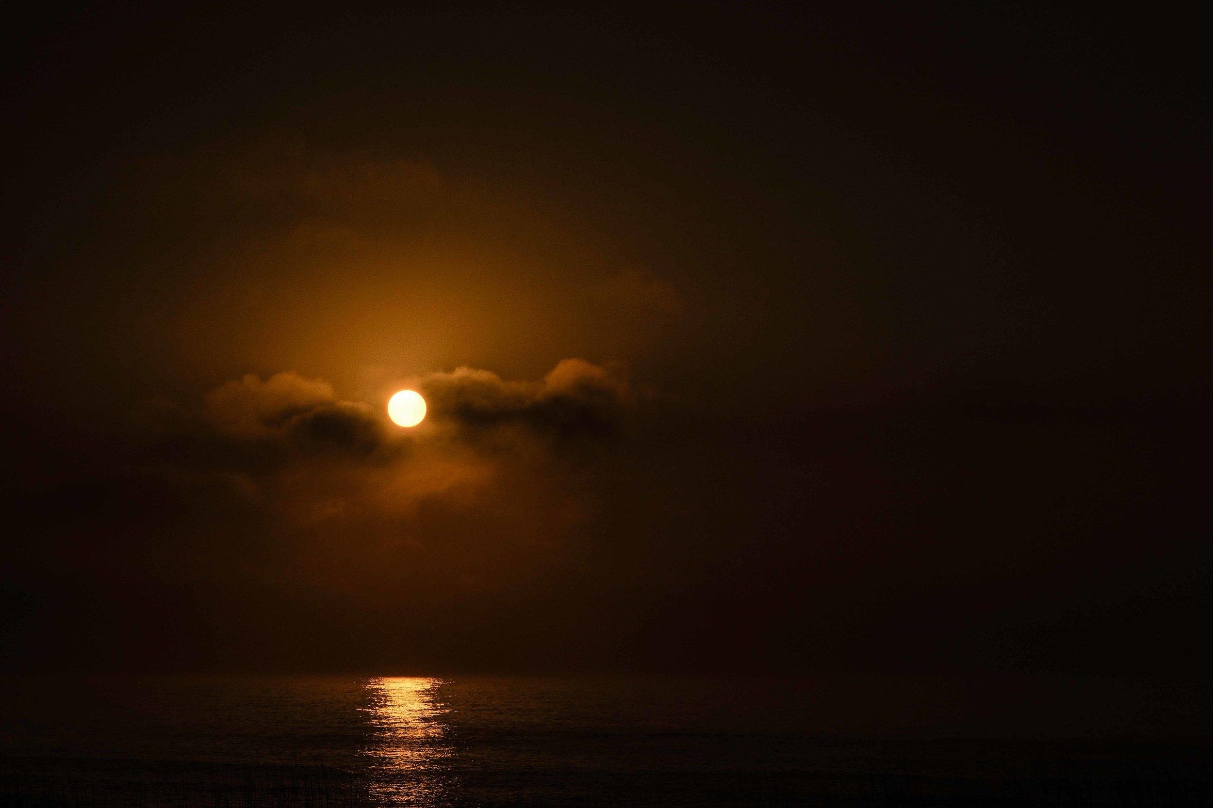 Sea of Light #15, 2014_1.jpg