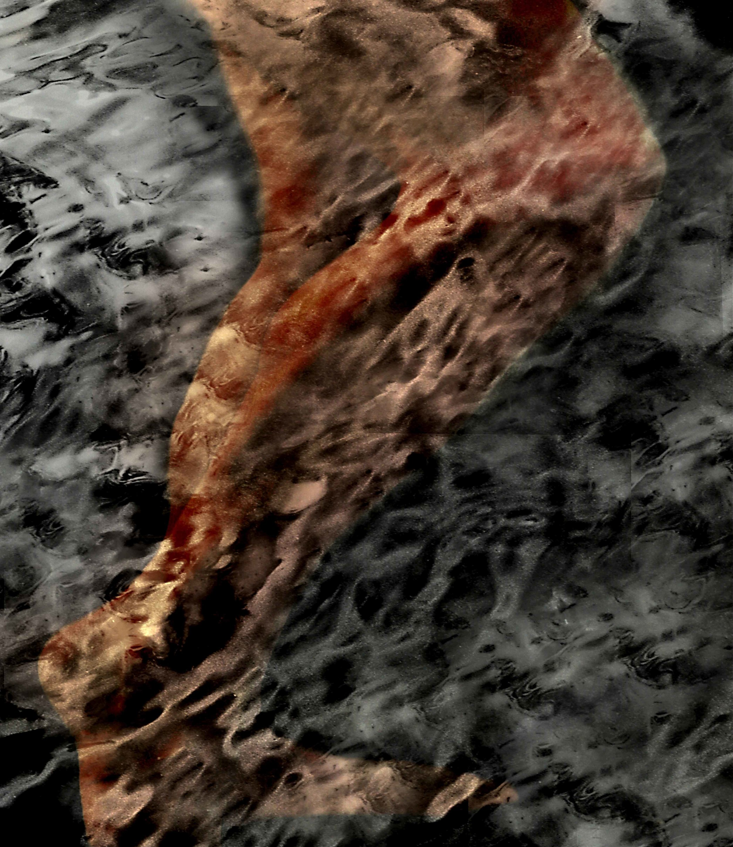 I Sing the Body #2, 2006.jpg