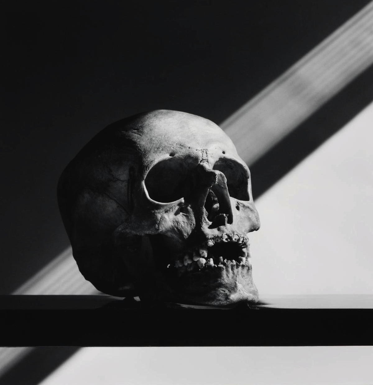 Robert_Mapplethorpe-Skull-1988-hughlippe.jpg