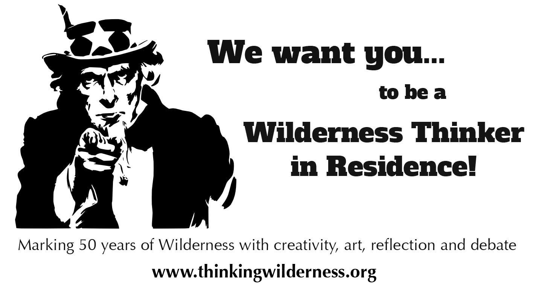 thinkingwilderness.jpg