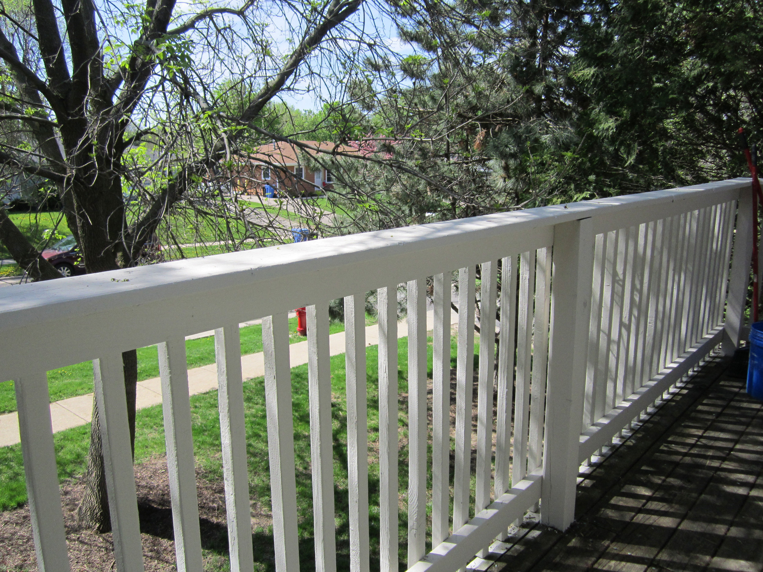 madison-painter-deck-painting-steve-brown.jpg