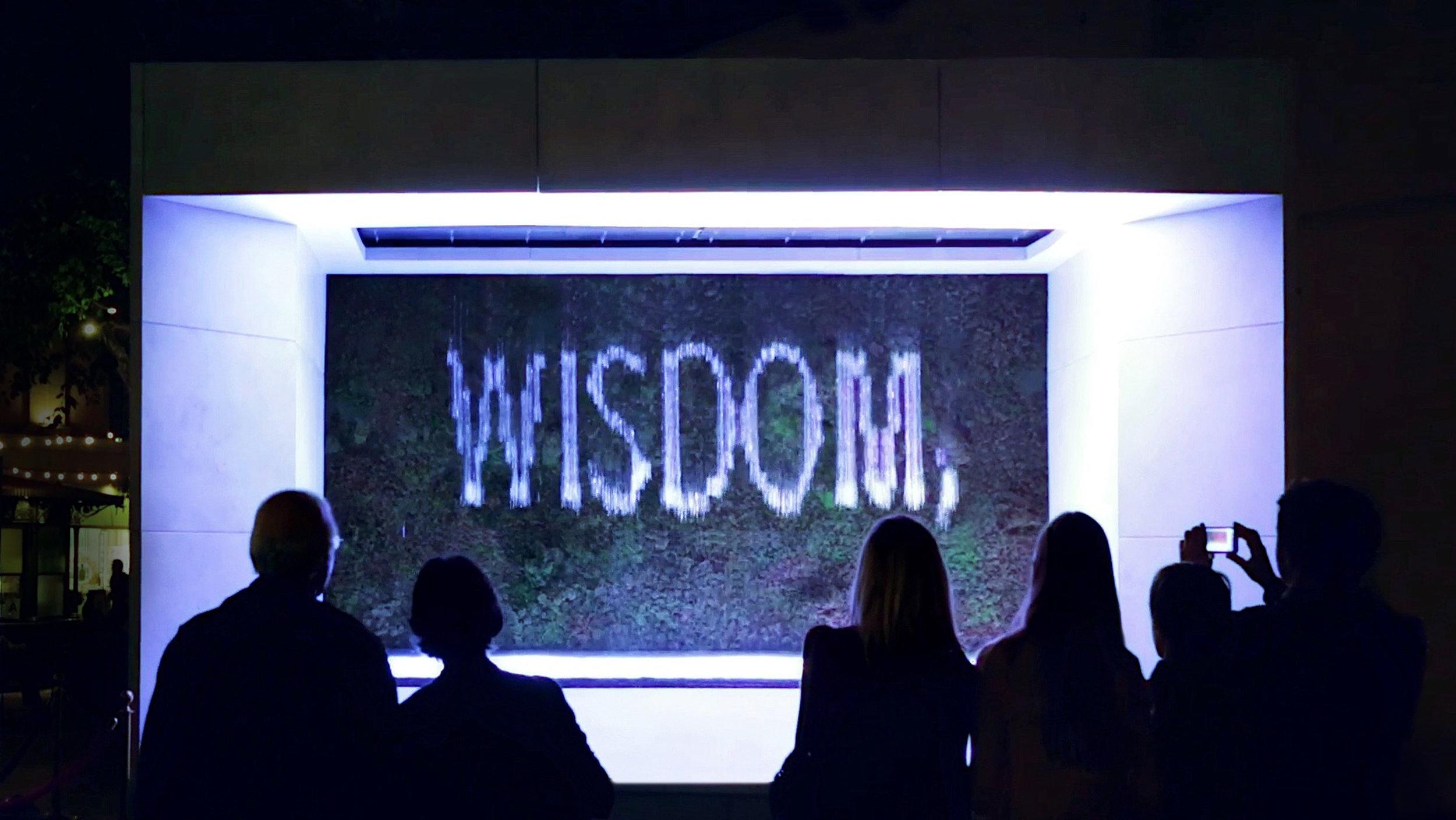 WISDOM_ADJ_2.jpg