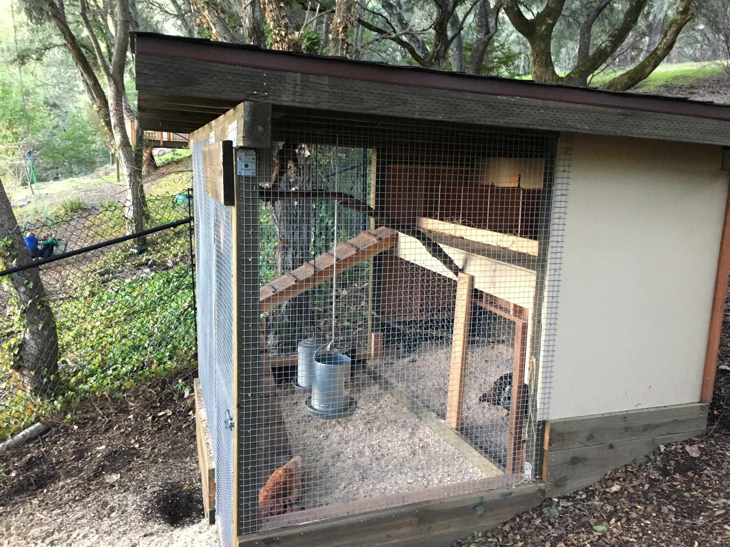 Wire fabric was used at all floor areas, wrapped up the walls and secured to prevent critter intrusions. Gravel and pine shavings cover the wire fabric.