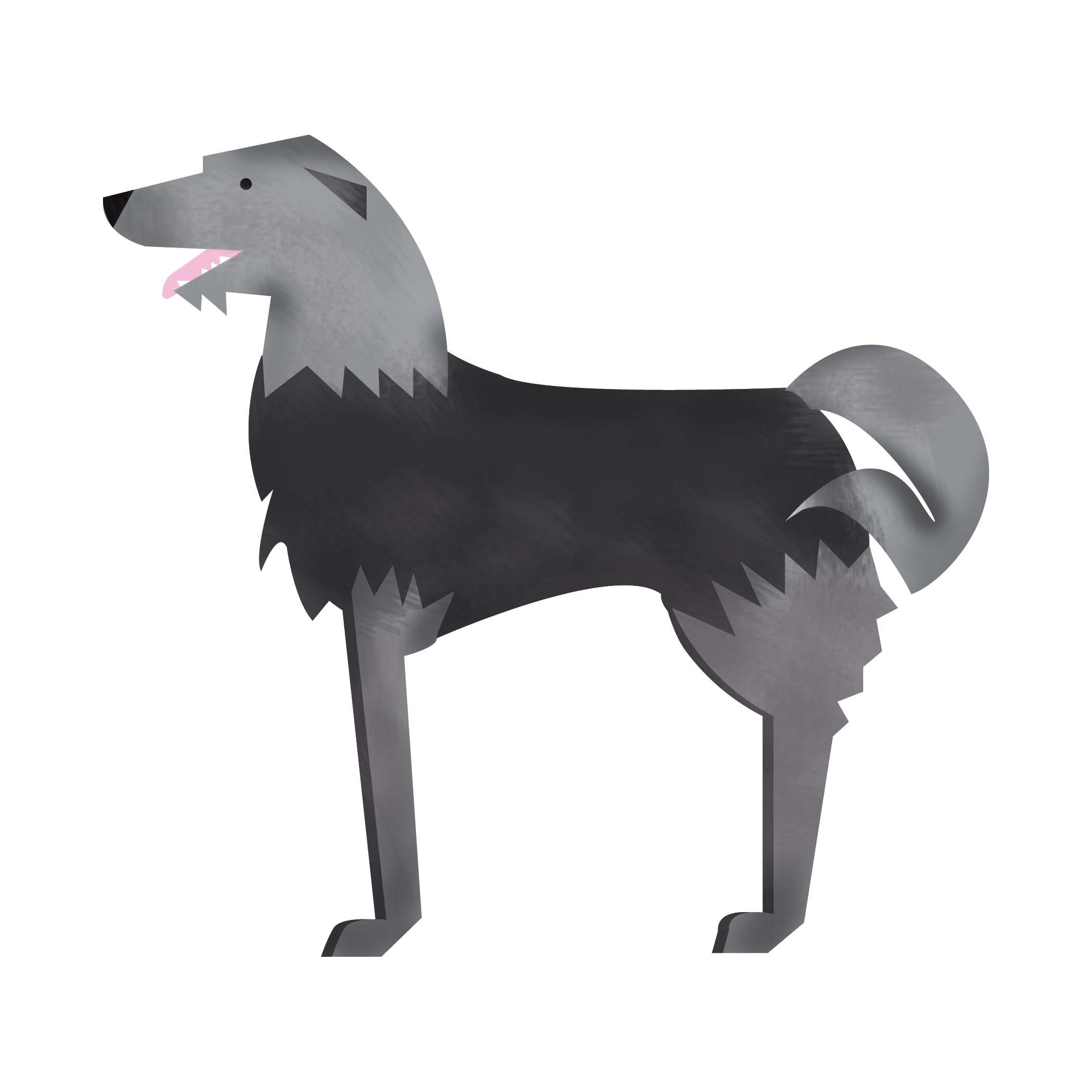 dogwash2.jpg