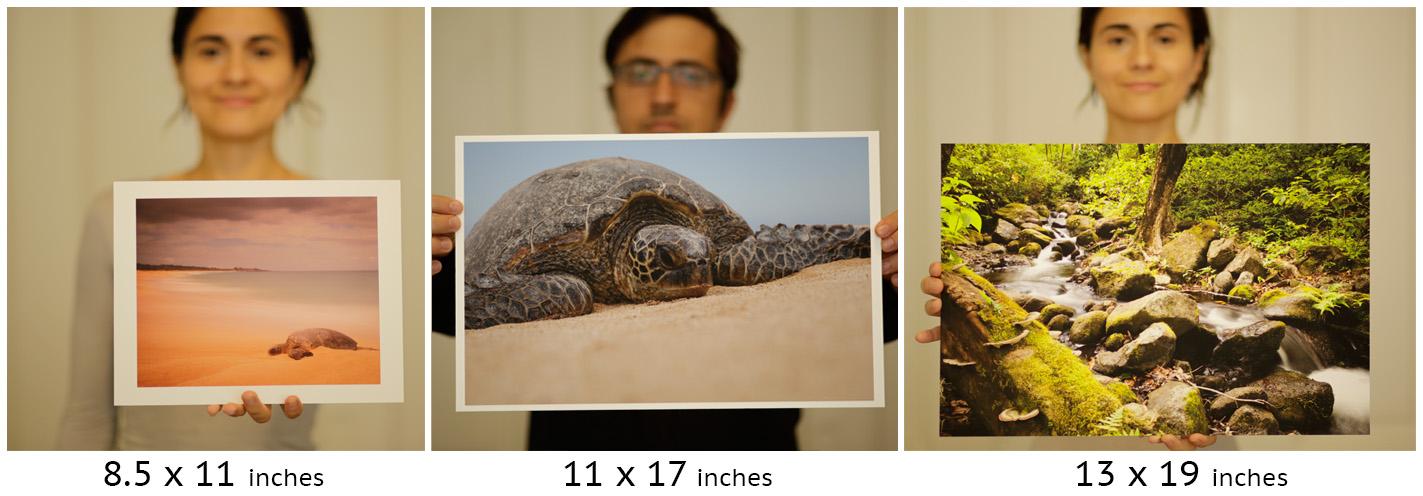 sizes3.jpg
