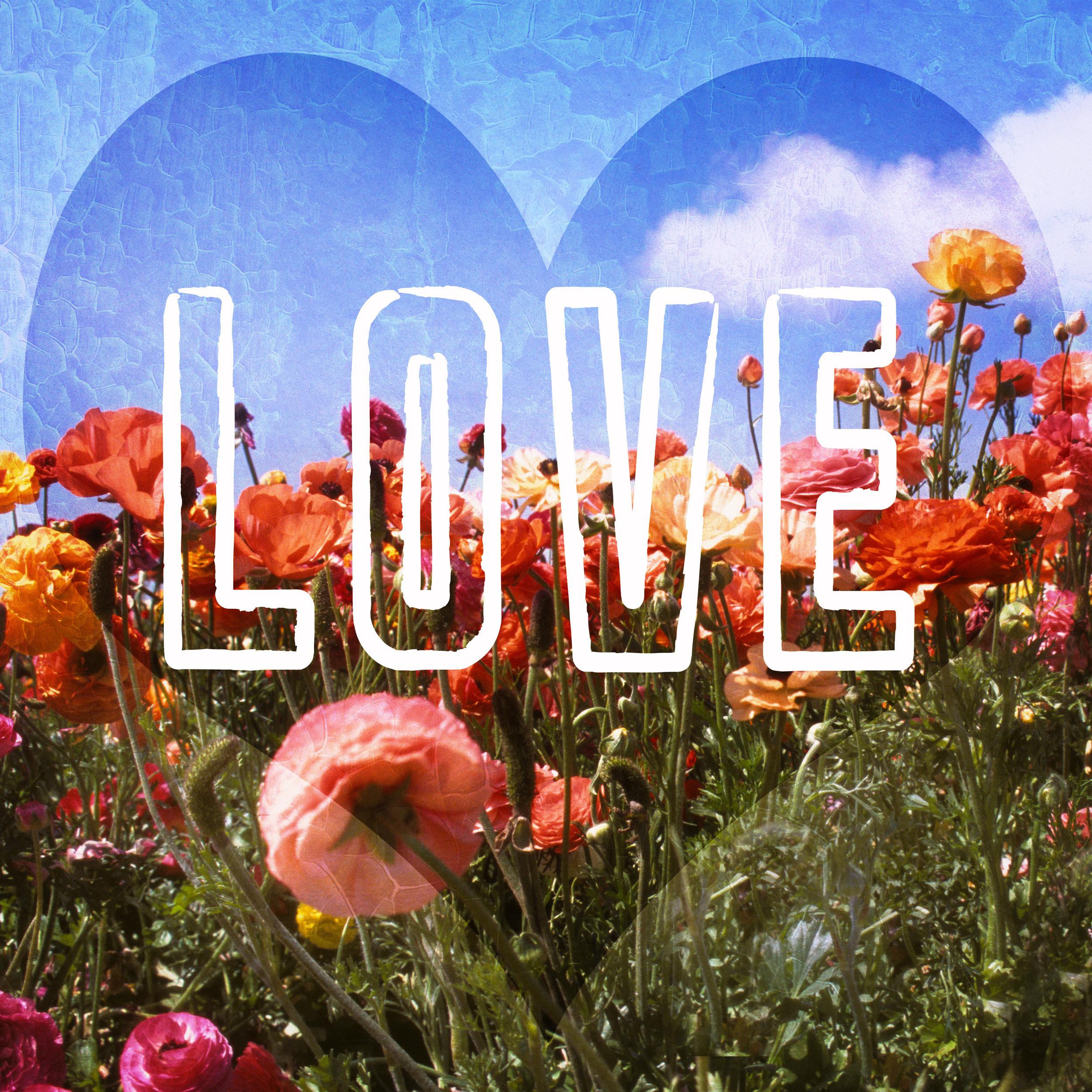 flowerfieldsinspiration.jpg