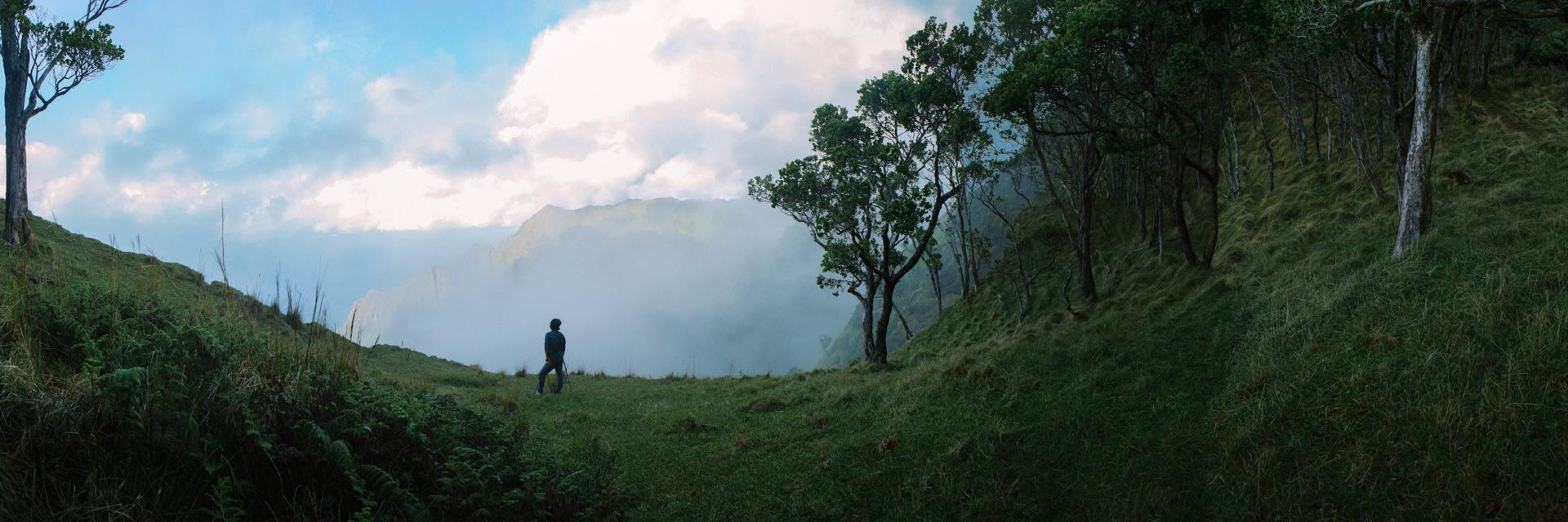 Shaun Fog Ridge.jpg