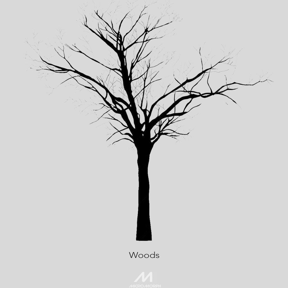Woods2.png