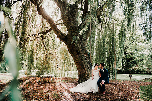 Dan & Lizzie's Wedding