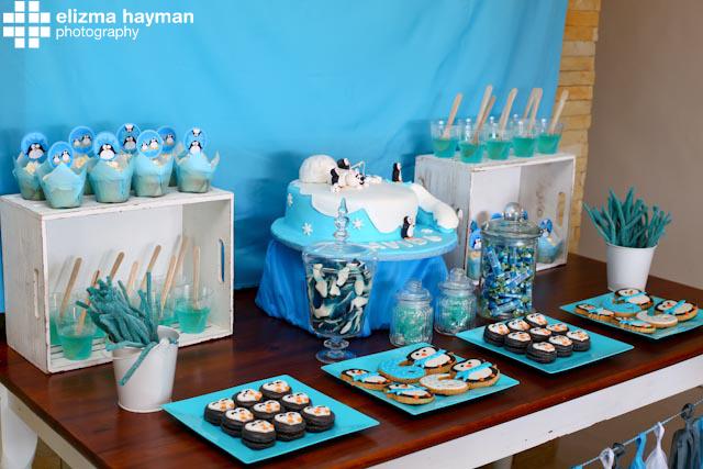 Elizma Hayman Photography birthday party photos
