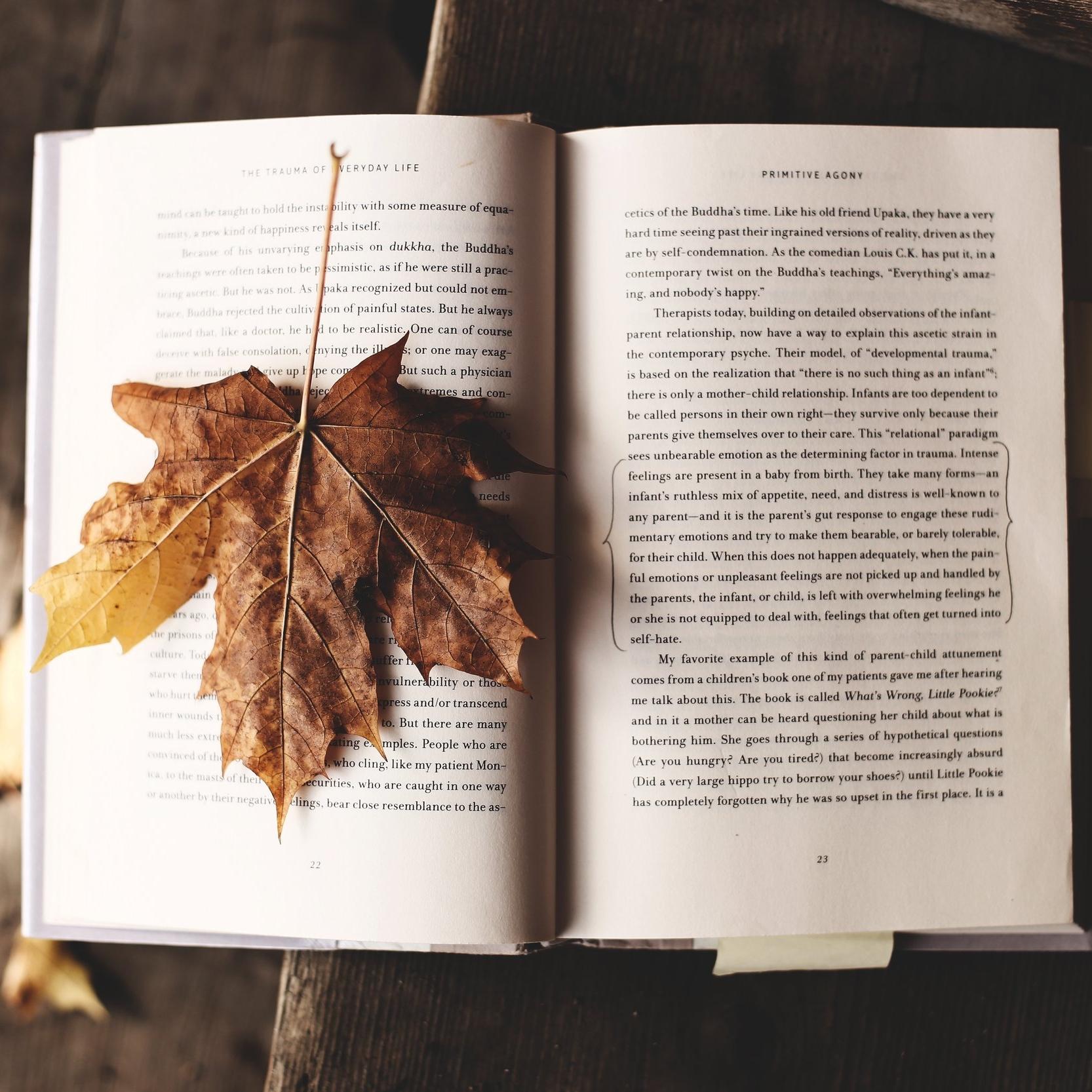 Leaf Book.jpg