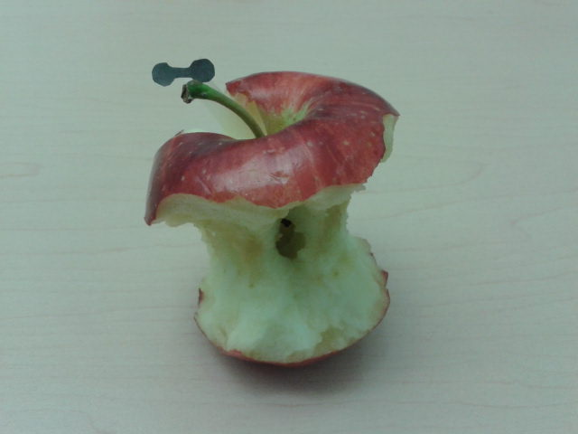 apple core.jpg