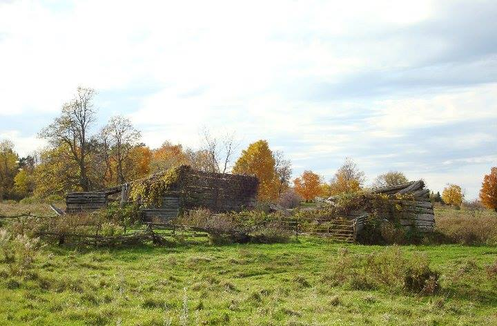 Munster resident Maggie Tunbridge captured the Shillington/Old Methodist Cemetery and the Old Shillington property on Copeland Road back in October 2010.Thank you to Maggie for sharing this photo!
