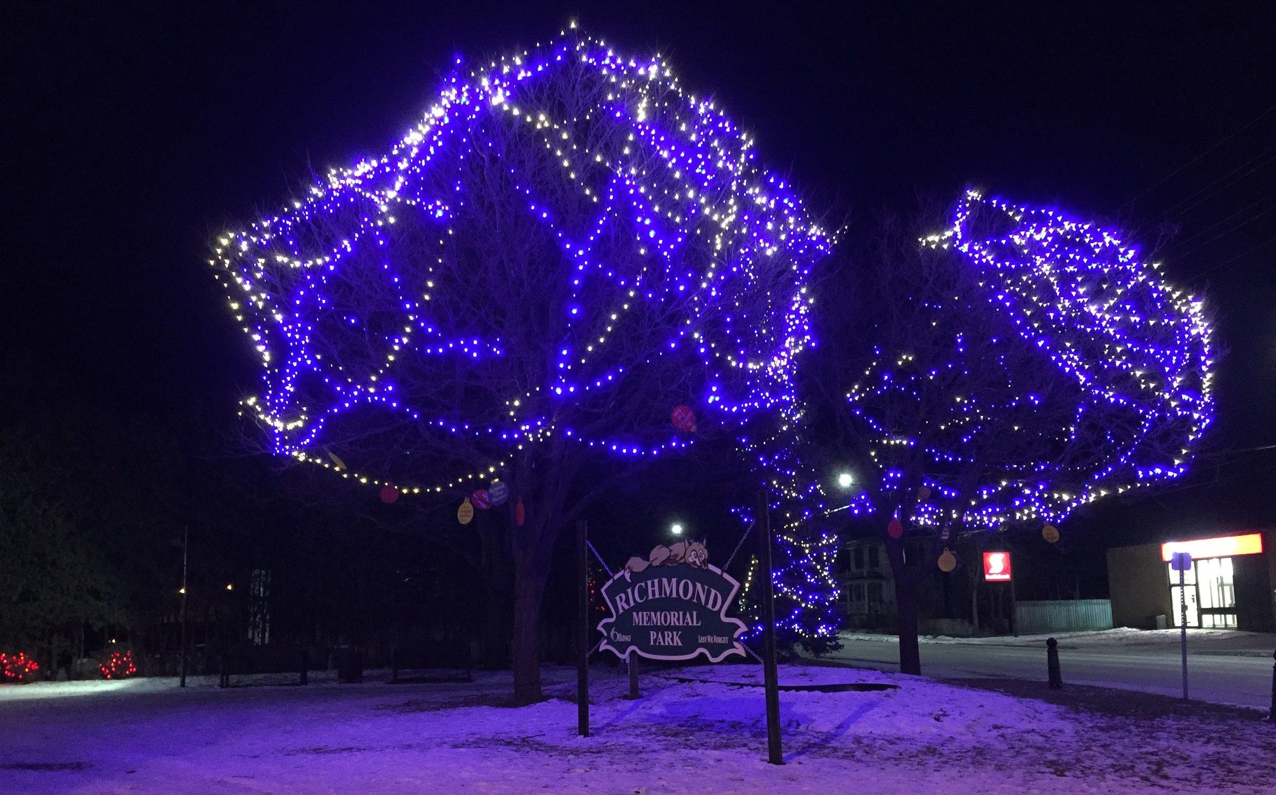 We hope you have had the chance to take in the beautiful lights in Richmond's Memorial Park!