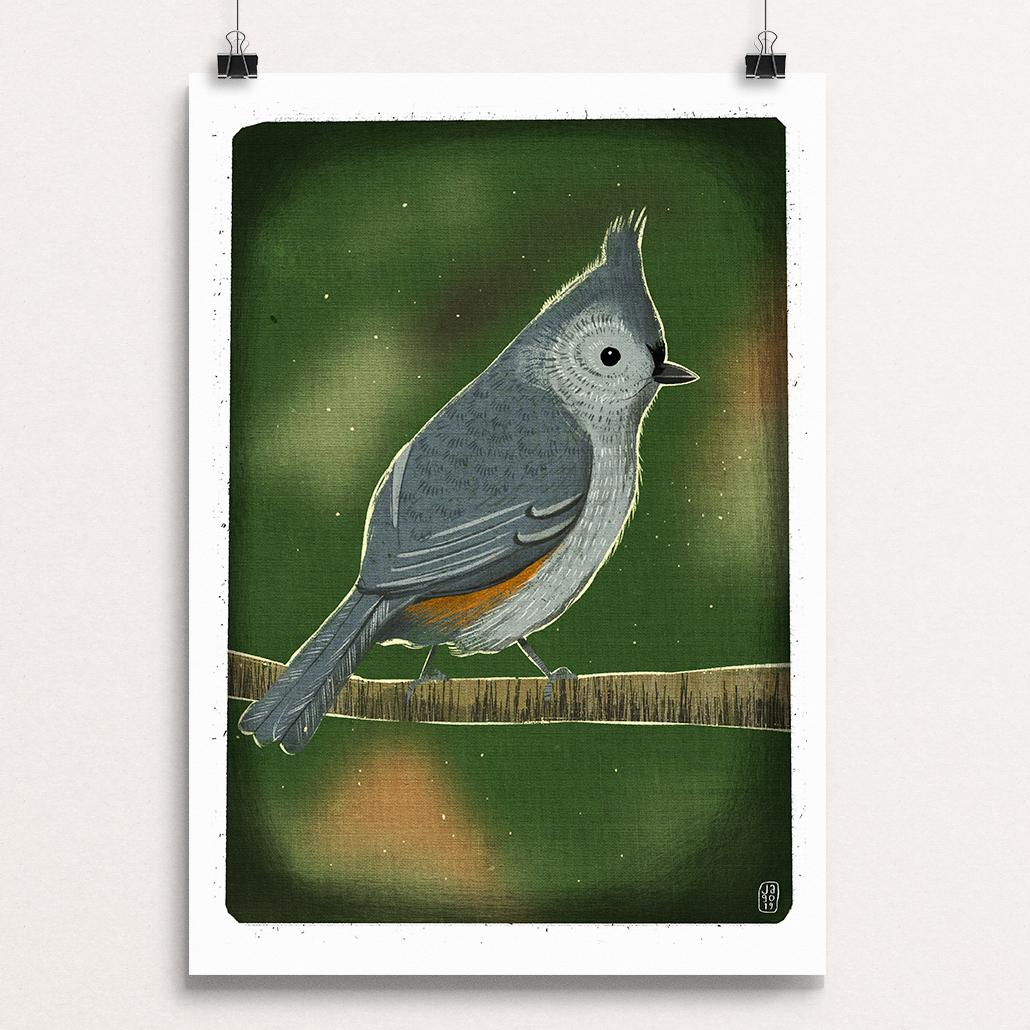 04 20 Winter Birds - Titmouse clips.jpg