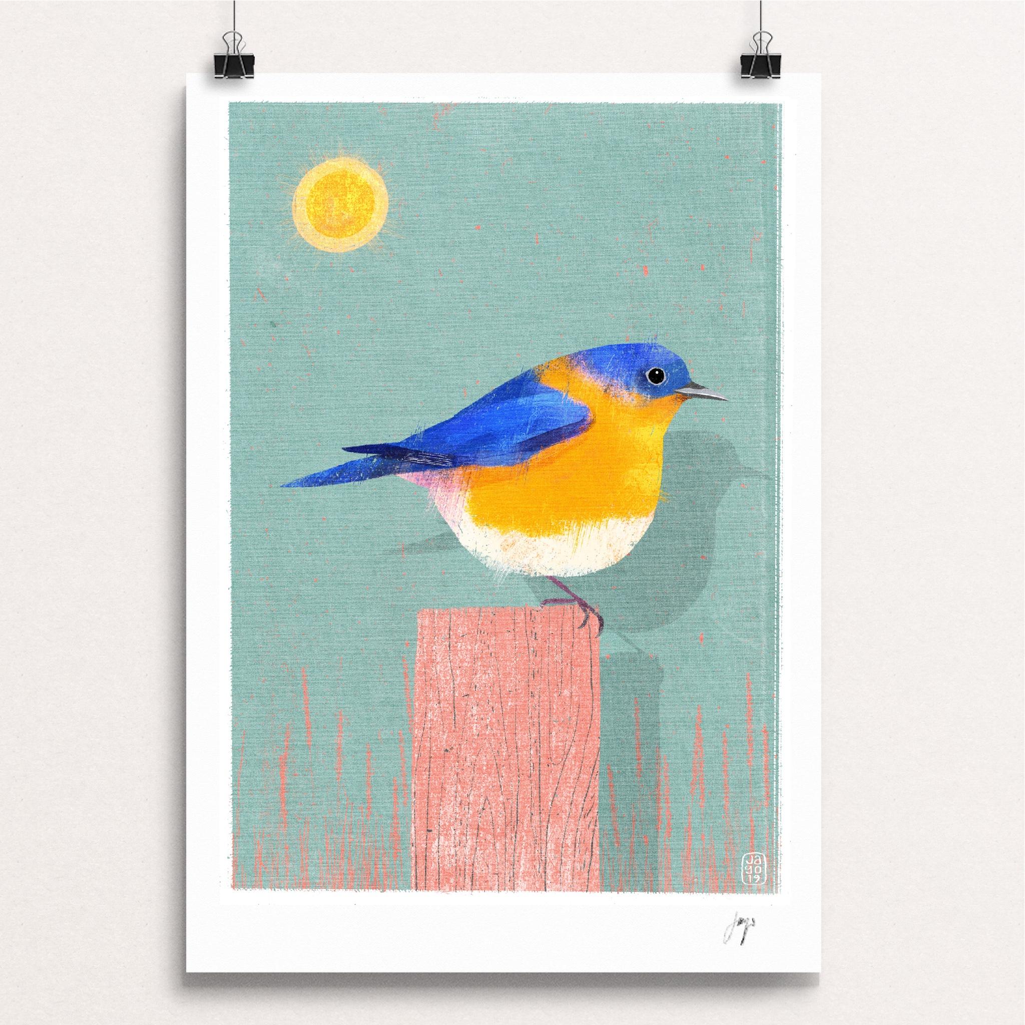 18 20_Winter_Birds_Day_Eighteen_-_Eastern_Bluebird clips.JPG