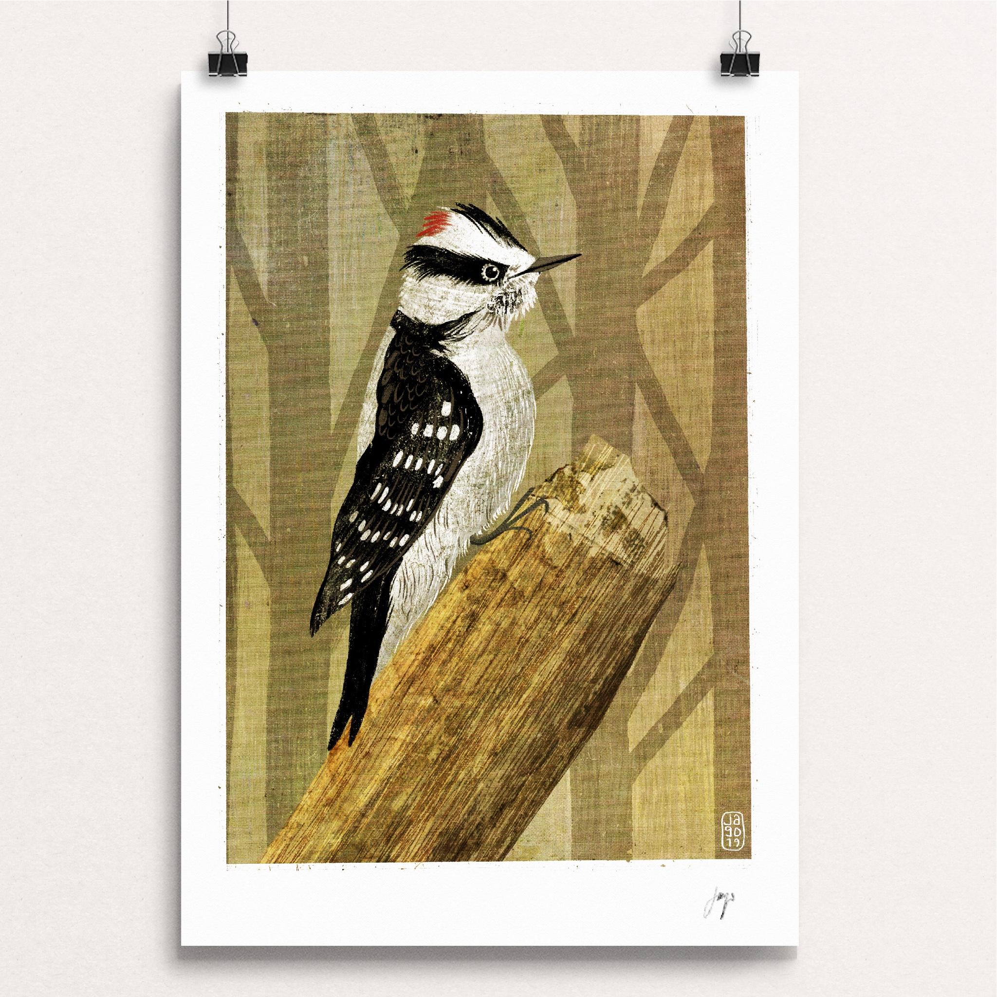 11 20 Winter Birds Downy Woodpecker clips.JPG