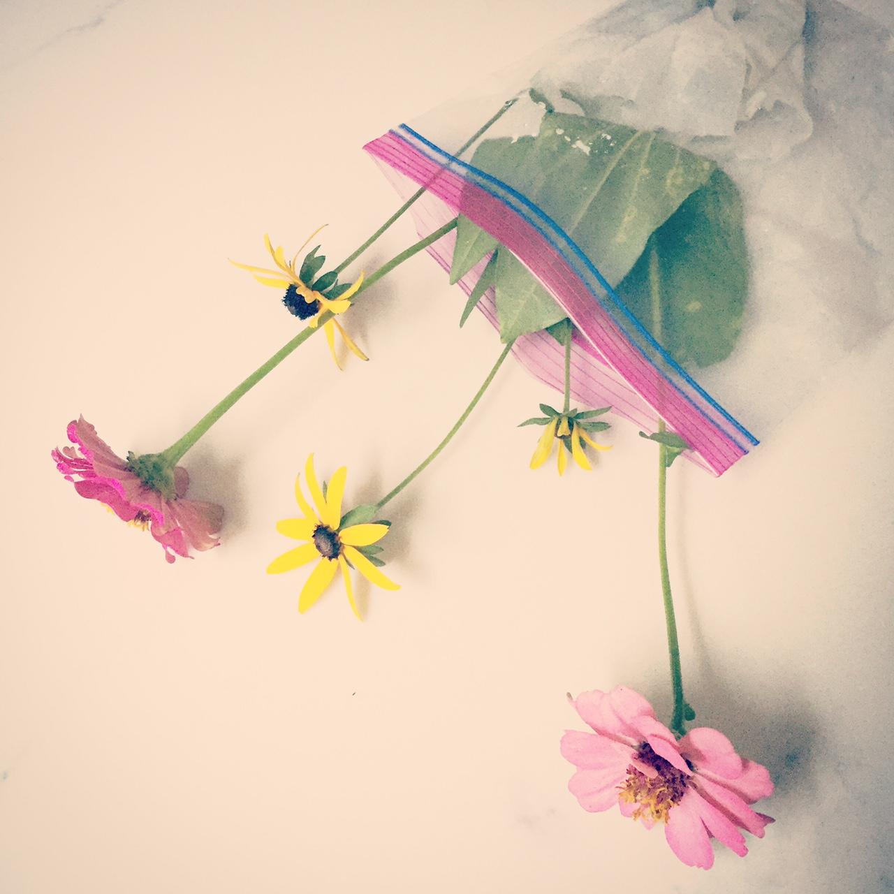 flowers in baggie.JPG